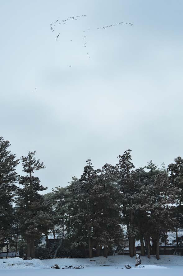 2012311hokkikou